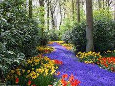 Картинки по запросу природа фото весна
