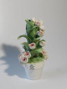 Bomboniera per Matrimonio piantina in Ceramica di Capodimonte con rose boccioli. Succulents, Rose, Plants, Flowers, Pink, Succulent Plants, Plant, Roses, Planets