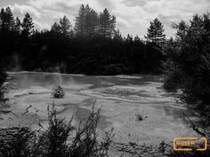 Mud pools near Waiot