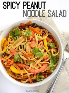Spicy Peanut Noodle Salad - BudgetBytes.com