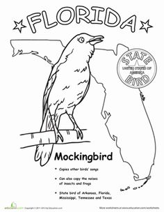 First Grade Animals Life Science Worksheets: Florida State Bird