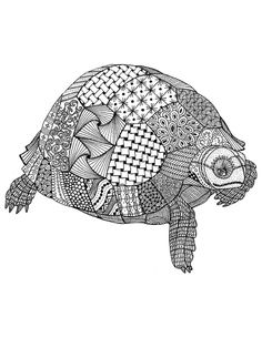 Zentangle Tortoise Art Print