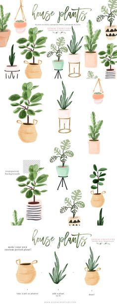 Watercolor House Plants Clip Art, Indoor Plants Potted Plant Clipart, Cactus Succulent, Ceramic Planter Fiddle Leaf Fig Monstera Rubber tree - Home Professional Decoration Plant Painting, Plant Drawing, Plant Art, Plant Decor, Rubber Plant, Rubber Tree, Indoor Plant Pots, Potted Plants, Indoor Garden