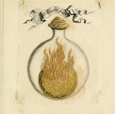 Accidental Mysteries, 01.06.13: The Alchemist's Notebook: Observatory: Design Observer