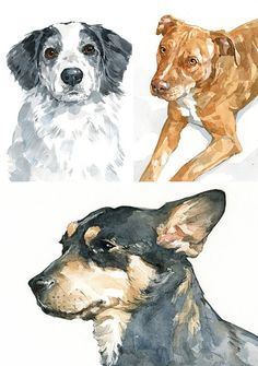 Custom Dog Portrait 8x10 watercolor painting by studiotuesday