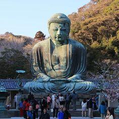 The great Bouddha of Kamakura. Not sakuras but it doesn't matter !  La Grand Bouddha de Kamakura de suffit à lui-même pas besoin de cerisiers en fleurs !  #kamakura #kamakurajapan #japan_camera #japan #visitjapanau #visitjpn #religious #bouddha #greatbouddha #statue #sunset #endoftheday #infrontofme #hiking #nearthesea #itdoesntmatter #impressive #oldjapan #shogun #eos70d #japankudasai