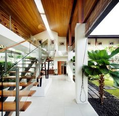Interesting Tropical Contemporary House Design With Glass Wall Wooden Stairs Interior Also Lighting In Wooden Ceiling Plus Plant In Terrace: Wonderful Tropical House Ideas with Modern Design Sun House, Fish House, Wooden Ceilings, Wooden Stairs, Wooden House, Architecture Design, Residential Architecture, Space Saving Staircase, Modern Pools