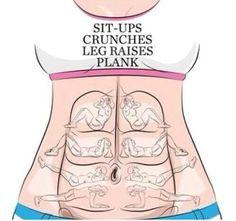 Bauchmuskel Bereiche