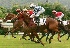 riding a racehorse