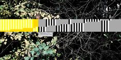 countune.com | 2014,12,30 | Background: Gerd Jansen