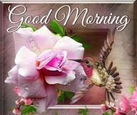 Good Morning, Have A Blessed Sunday