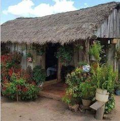 """Linda, limpia, humilde, florida y alegre casita de un rancho donde se ve que vive el amor....me encanta!... """"Choza donde se ríe, vale más que palacio donde se llora""""..."""