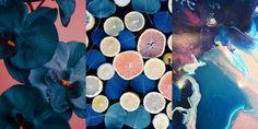 Peach & Cobalt   // Knee Deep In Chic Cobalt, Peach, Mood, Deep, Chic, Painting, Colour, Art, Shabby Chic