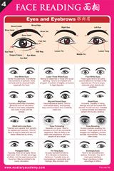 Best Eyebrow Shapes Different Face - Round, Oval, Square