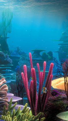 Underwater iPhone 6 Wallpaper 7116 - Underwater iPhone 6 Wallpapers