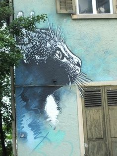 Cat mural on building