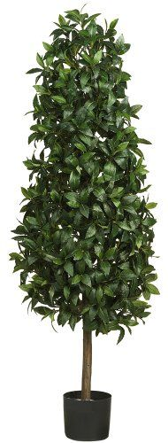 awesome  Unique triangular shape adds character Natural trunk Features 1628 deep rich leaves  #Green #NearlyNatural  https://www.silkyflowerstore.com/product/nearly-natural-5243-sweet-bay-pyramid-silk-tree-5-feet-green/  #Green #NearlyNatural