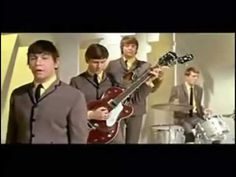 The Animals - House Of The Rising Sun. Twist from the  Animal   shaped House