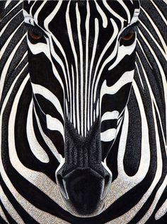 Zebra Illustration Art-- Original Animal Painting by Teal Buehler Arte Zebra, Zebra Kunst, Zebra Art, Teal Art, Zebra Painting, Africa Painting, Africa Art, Zebra Illustration, African Love