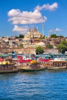 The Suleymaniye Mosque (Süleymaniye Camii, on the Third Hill and boats selling cooked fish on the banks of the Golden Horn, Istanbul Turkey. Pictures Images, Travel Pictures, Turkey Country, Golden Horn, Turkey Stock, Turkey Photos, Greece Travel, Greece Trip, Archaeological Site