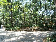 Combina Tudo - O Blog que é Sua Cara: Parque Trianon- Porque você merece lazer e descans...