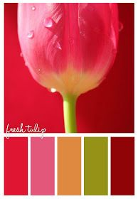 Gold On The Ceiling: Fresh Tulip
