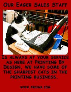 Book Printing Companies, Magazines, Cats, Business, Books, Prints, Design, Journals, Gatos