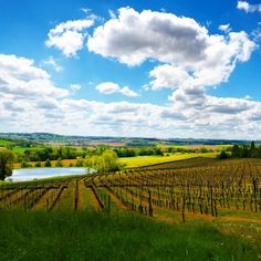 #nuage #cloud #ciel #sky #lac #lake #SamsungInstawards #vigne #vine #printemps #spring #campagne #country #gers #tourismegers