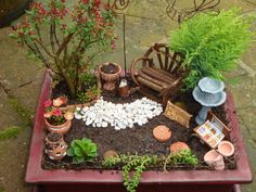 My own miniture garden The Effective Pictures We Offer You About Miniature Garden bench A quality picture can tell you many things. You can find the most beautiful pictures that can be presented to yo Mini Fairy Garden, Fairy Garden Houses, Gnome Garden, Miniature Plants, Miniature Fairy Gardens, Little Gardens, Small Gardens, Suculentas Diy, Deco Zen