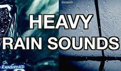 'Rain' 2 Hours of Heavy Rainfall and Thunder Sounds   High Quality Sleep...