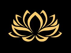 Golden lotus by @liftarn, Golden lotus flower on black background traced from https://pixabay.com/sv/lilja-blomma-kontur-konturer-gul-671450/, on @openclipart