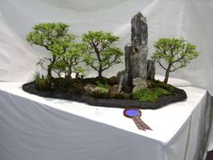 Image from http://www.scottishbonsai.org/atoz/photos/bonsai_landscape_01.jpg.