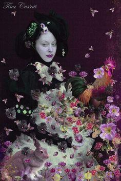 tina cassati art | Tina Cassati #fashion #fashion photography #art photography(Bing Search)