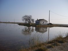 Arrossals del Delta de l'Ebre a l'hivern Delta Del Ebro, Cabin, House Styles, Home Decor, Decoration Home, Room Decor, Cottage, Interior Decorating, Cottages
