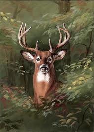 Deer Art Prints Wildlife Dale Kunkel | Deer Artwork | Pinterest ...