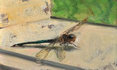 """""""Dragonfly on a Sill, 7/10/2015"""" by Duane Keiser #Realism"""