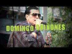 Domingo Quiñones, Morrison Ave Festival, Bronx NY, Si Pudiera Volver a V...