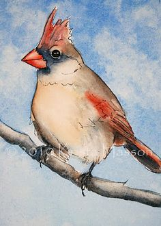 What is Krista Painting Now?: Cardinals done in Pen & Ink with Watercolor