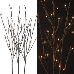"RAZ Lighted Branches  Set of 3 Branches, Brown with Clear Lights Made of Wire Measures 39"" Approx 12"" - 15"" Between Branches UL Certified Includes 1 AC Adapter Indoor Use Only 96 Clear"