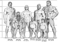 AD&D Racial/Height Comparison:Male (Warning: NUDITY) - Fantasy Art