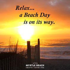 415 Best Myrtle Beach Beauty Images In 2019 Myrtle Beach