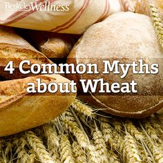Should you worry about wheat? Our experts bust 4 common myths. http://www.berkeleywellness.com/healthy-eating/nutrition/article/should-you-worry-about-wheat/?ap=2012 #glutenfree #nutrition #diet #food