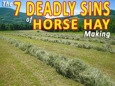 Horse Hay, Dressage Horses, Horse Barns, Horse Love, Cattle Farming, Livestock, Horse Information, Goat Care, Farm Plans
