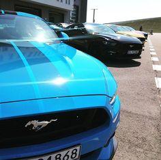 Dziś jesteśmy na prezentacji nowego Forda Mustanga GT. Klasyczne tylnonapędowe auto i 435 KM. Jest dobrze szybko i głośno! @ford @fordpolska  #ford #fordmustang #torjastrzab #radom #v8 #musclecar #racing #cars #ellepl  via ELLE POLAND MAGAZINE OFFICIAL INSTAGRAM - Fashion Campaigns  Haute Couture  Advertising  Editorial Photography  Magazine Cover Designs  Supermodels  Runway Models