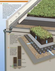 How Green Roofs work. Click image to enlarge & visit the slowottawa.ca Grow It board >> http://www.pinterest.com/slowottawa/grow-it/ #greenroofs