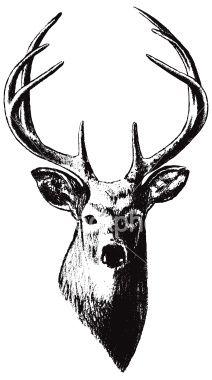 Deer Head (Vector) Royalty Free Stock Vector Art Illustration