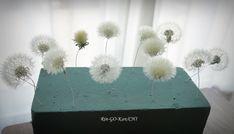 たんぽぽの綿毛ドライの作り方 の回 | Lotus Flower リンゴカンチ Pressed Flower Art, Uv Resin, General Crafts, Nature Crafts, Resin Crafts, Dried Flowers, Handicraft, Dandelion, Diy And Crafts