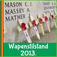 Wat wil je weten over Wapenstilstand 2013 in Belgie? Poppies, Triangle, Blog, Poppy, Blogging, Poppy Flowers