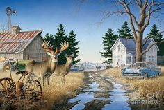 Larry Zach's wildlife art is available through JQ Licensing. His images of deer, turkey etc. Hunting Art, Deer Hunting, Whitetail Hunting, Hunting Stuff, Whitetail Bucks, Hunting Quotes, Wild Life, Deer Pictures, Deer Pics