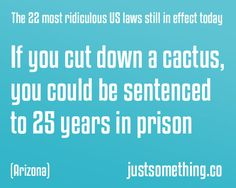 Ridiculours US laws